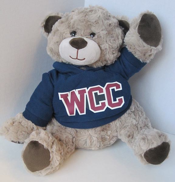 WCC Bear with hoodie